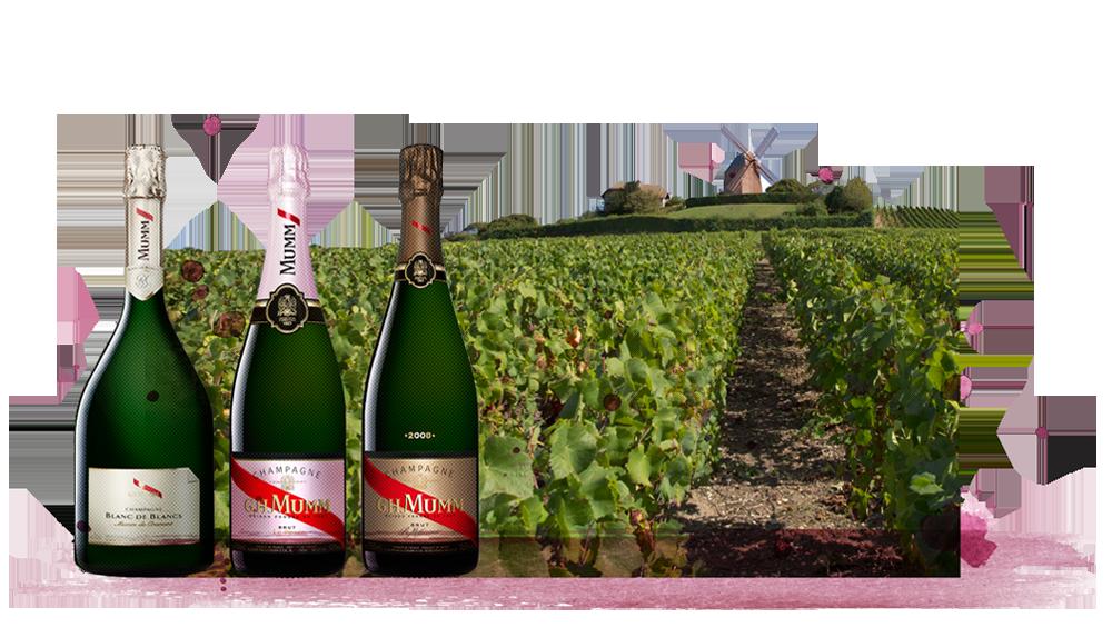 champagne-mumm-sverige-oldland.png