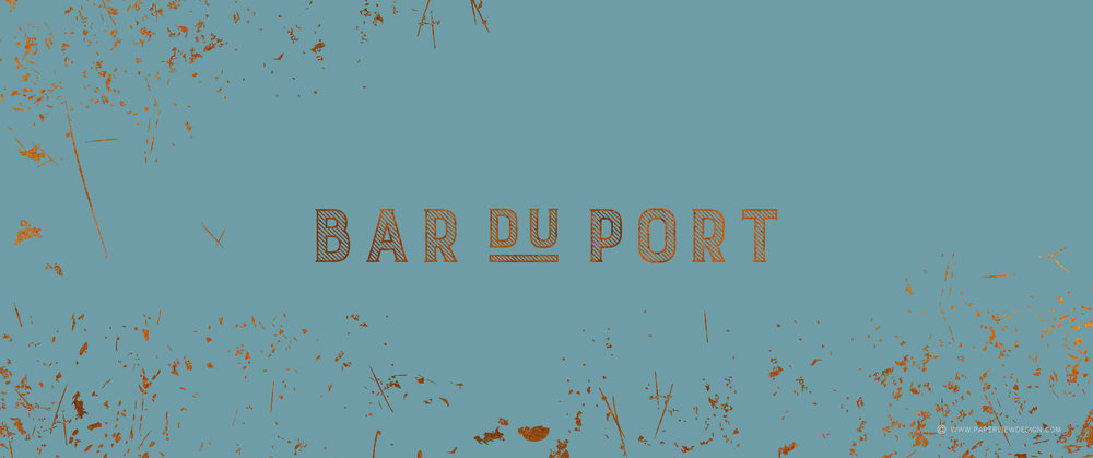 Paperview-website-barduport-Logo-01.jpg