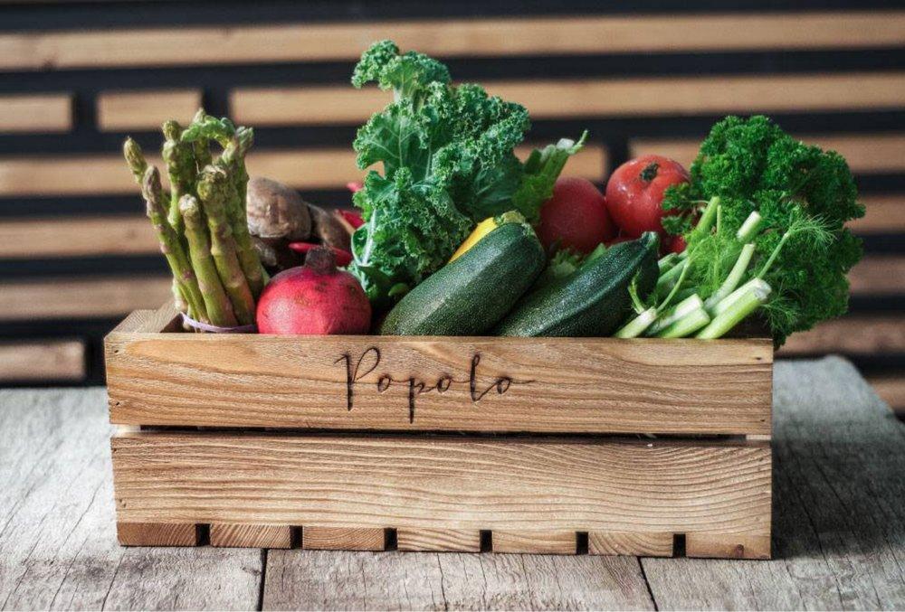popolo beirut branding vegetable case