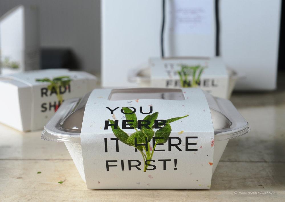 Organic-Sisters-Herb-Food-Box.jpg