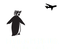 Flying Penguin ENG