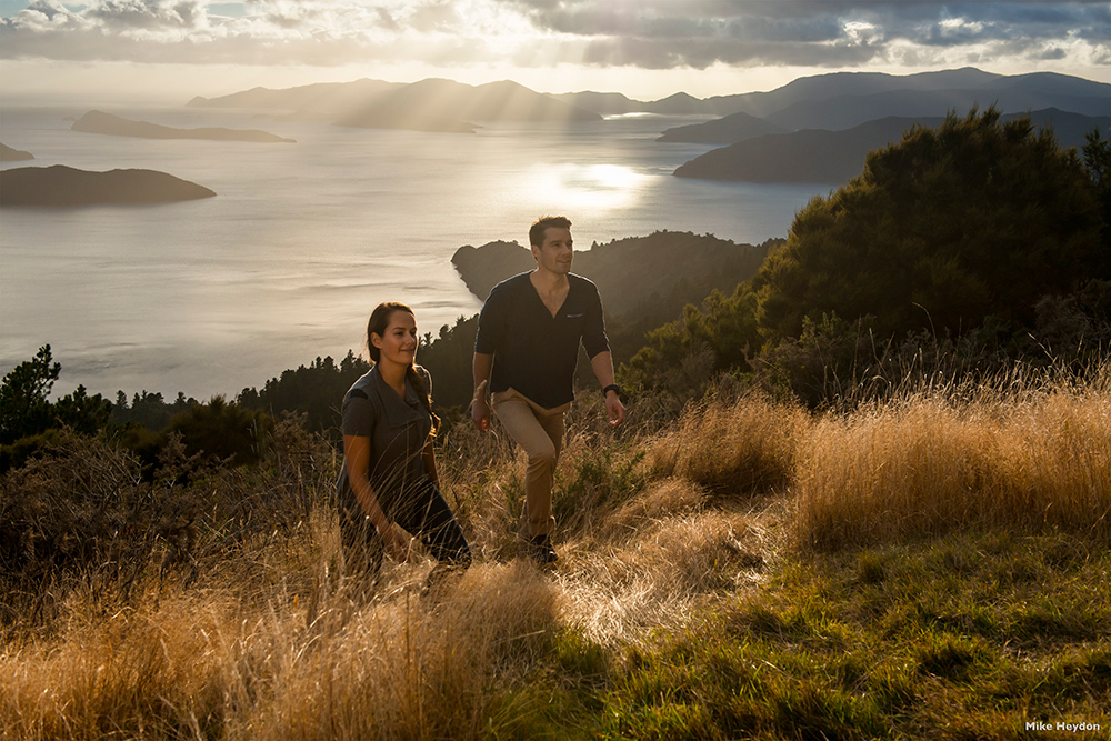 Ecological tours in Abel Tasman National Park
