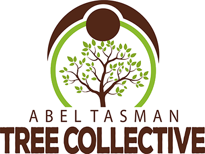 Logo-Tree-Collective.png