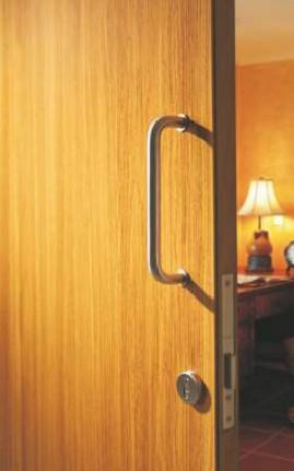 Hormann BGTIC Bangladesh woodgrain steel door picture.jpg