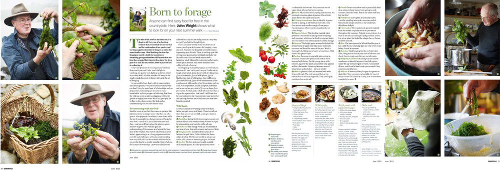 New Foraging Feature in last Months Countryfile with John Wright from River Cottage
