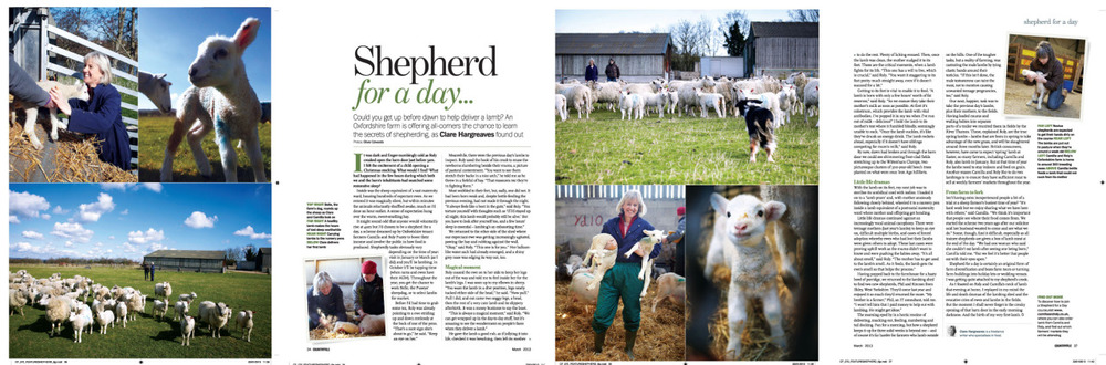 Shepherd for a day feature in this months Countryfile