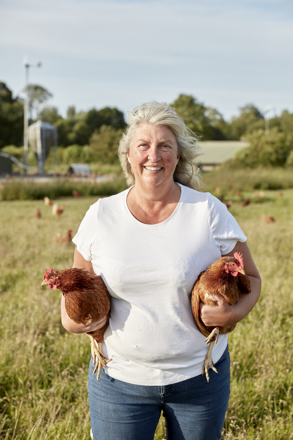 WW_LAWN_FARM_CHICKENS_001.jpg