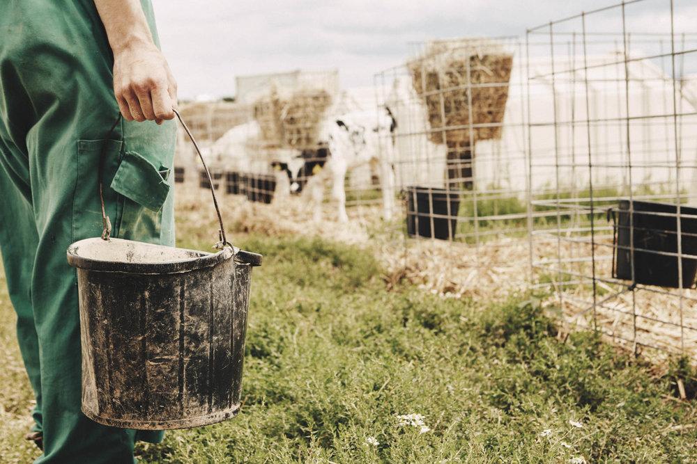 AGRICENTRE_QUANTOCK_FARM_015.jpg