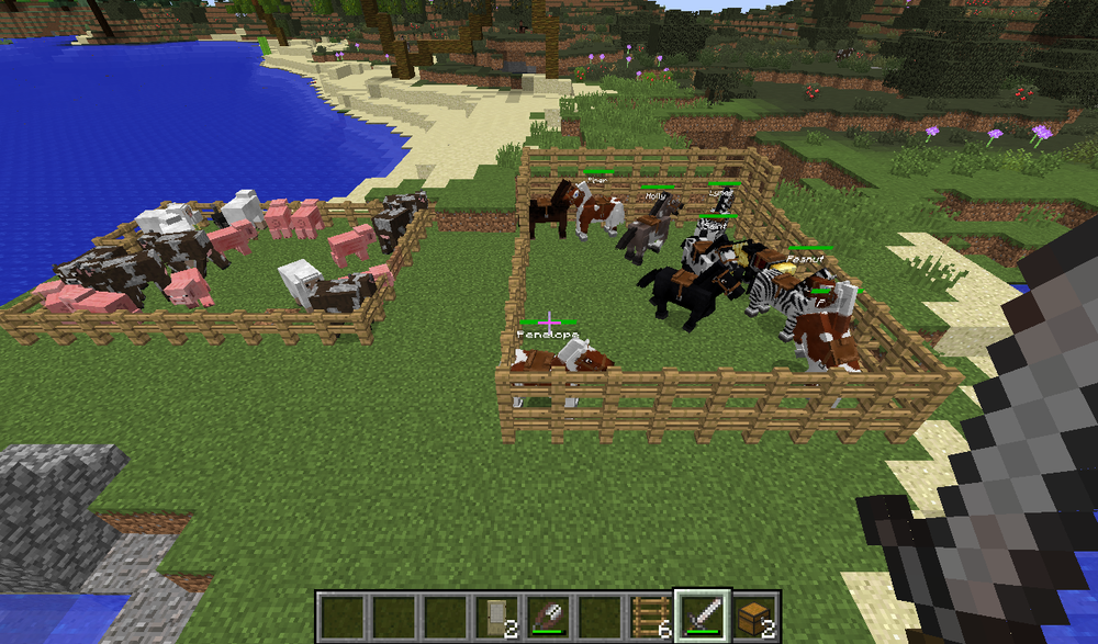 All our cattles and horses. (Yes, I do name each and every one of the horses).