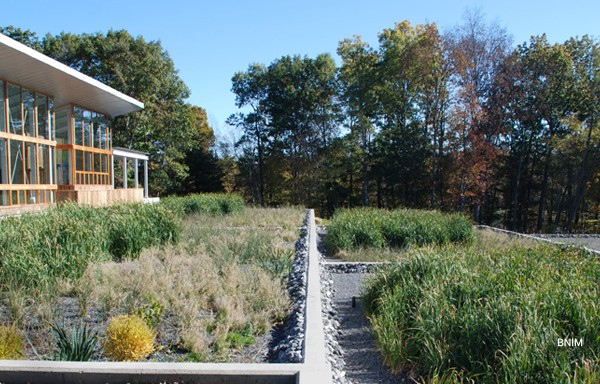 Constructed wetlands treating wastewater at the Omega Center. Rhinebeck, New York.