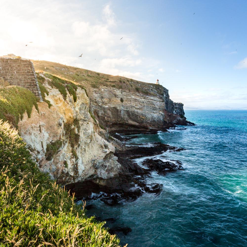 Neuseeland Dez klein 2015-32.JPG
