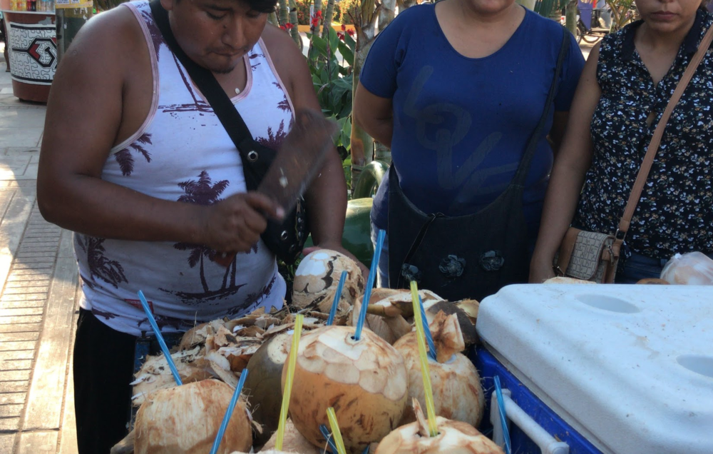 Fruits such as coconuts are beyond common - including tropical ones that are not found in the USA. What a delicious treat on the hot days of Peru - it's always hot in the jungle here.