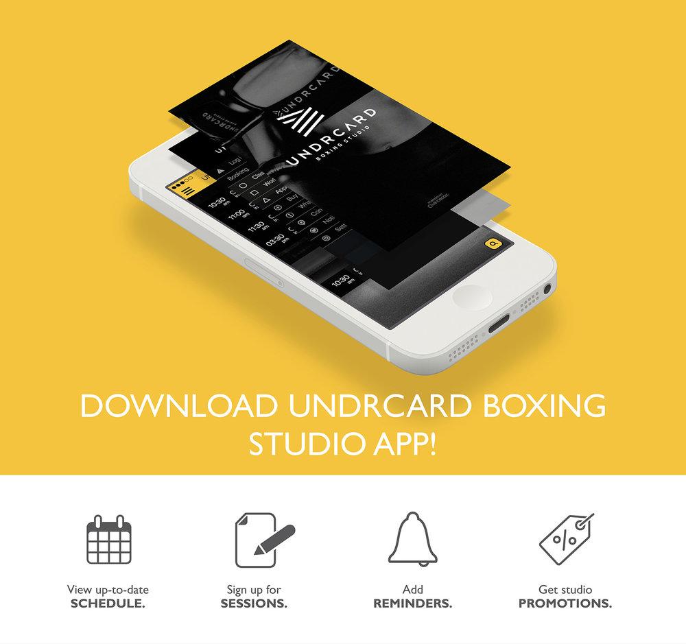 1255_UNDRCARD_boxing_studio_calgary.jpg