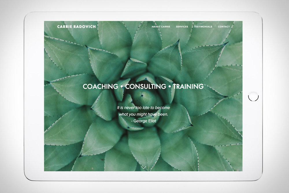 Carrie Radovich - Life/Career Coaching
