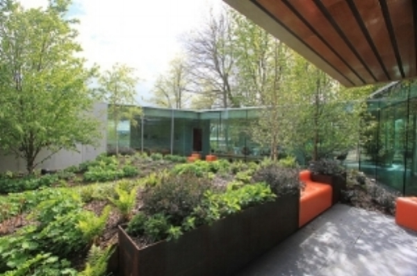 maggies garden 2.jpg