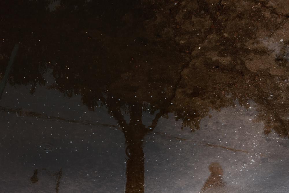 rainy day_web.jpg