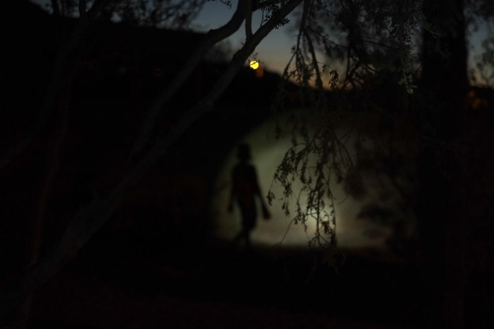 nightwalk_web.jpg
