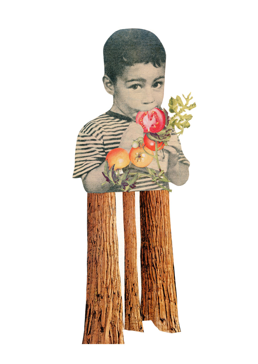 Tall (Nino Arbol)