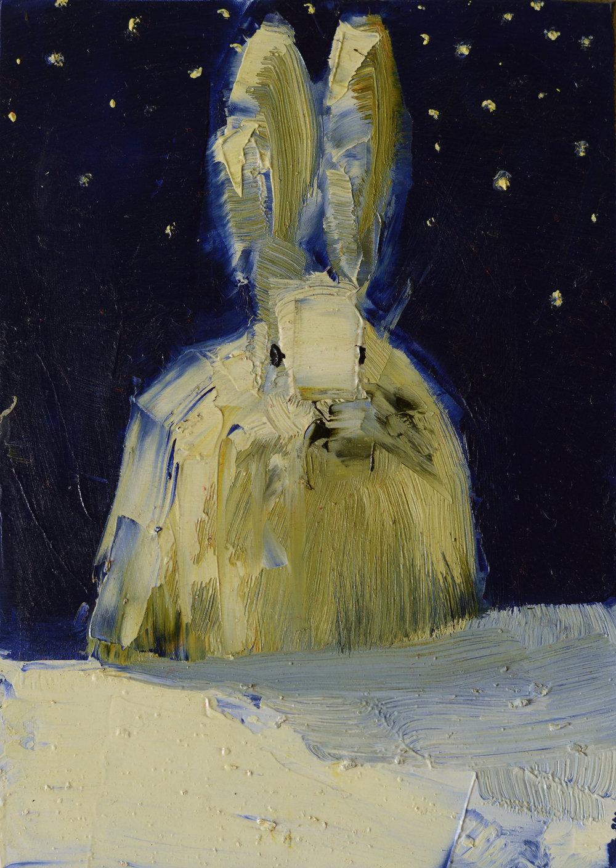 White Rabbit (Starry Night)