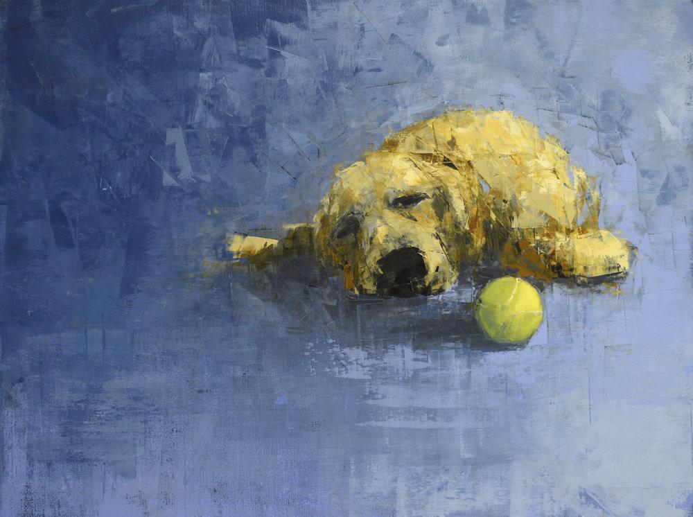 Golden Dog Dreaming (Tennis Ball)