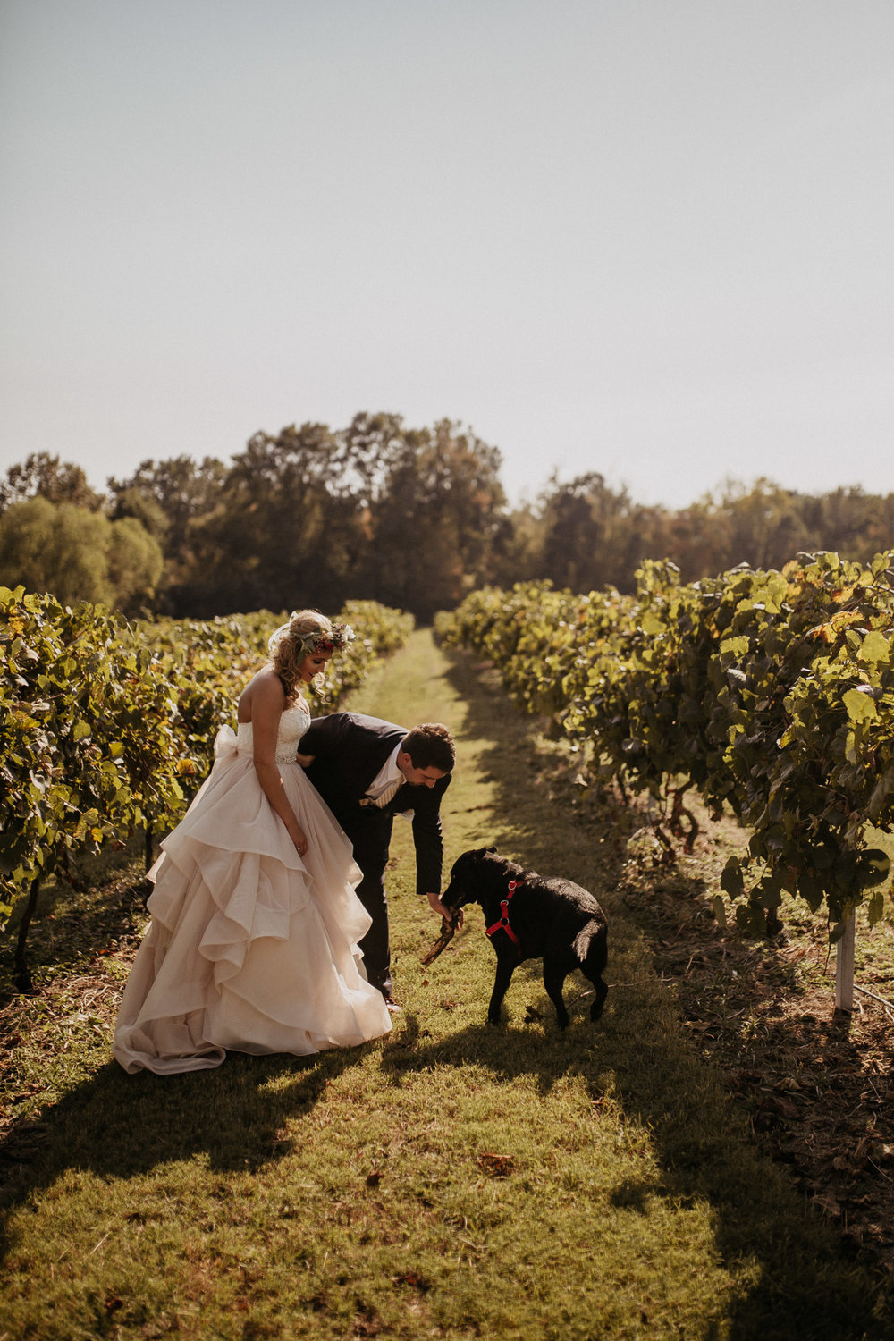 memphis-gatlinburg-nashville-tennessee-wedding-photographer-the-hatches-utah-colorado-washington-arizona-oregon-yosemite-national-park-elopement-adventure-emotional-journalistic-bohemian-florals-minimalistic-winery-elegant