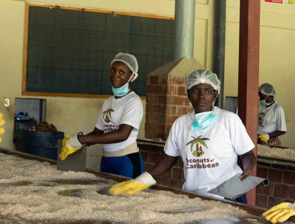 Gently Baked! - Our coconut chips are removed by hand from the coconut and then gently baked.