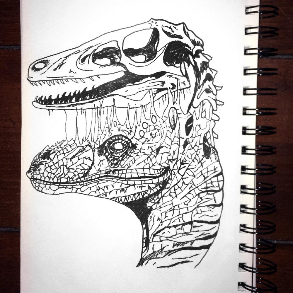 raptor2.jpg