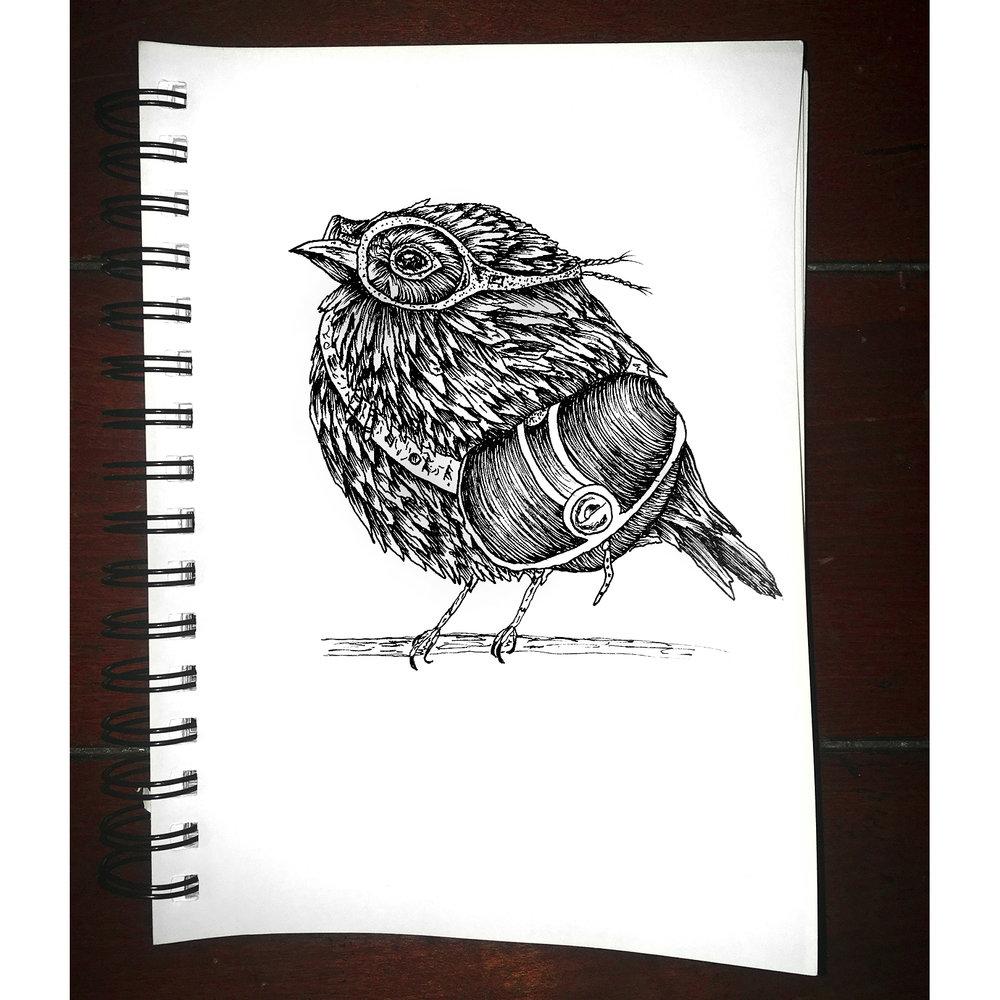 bird-travel.jpg