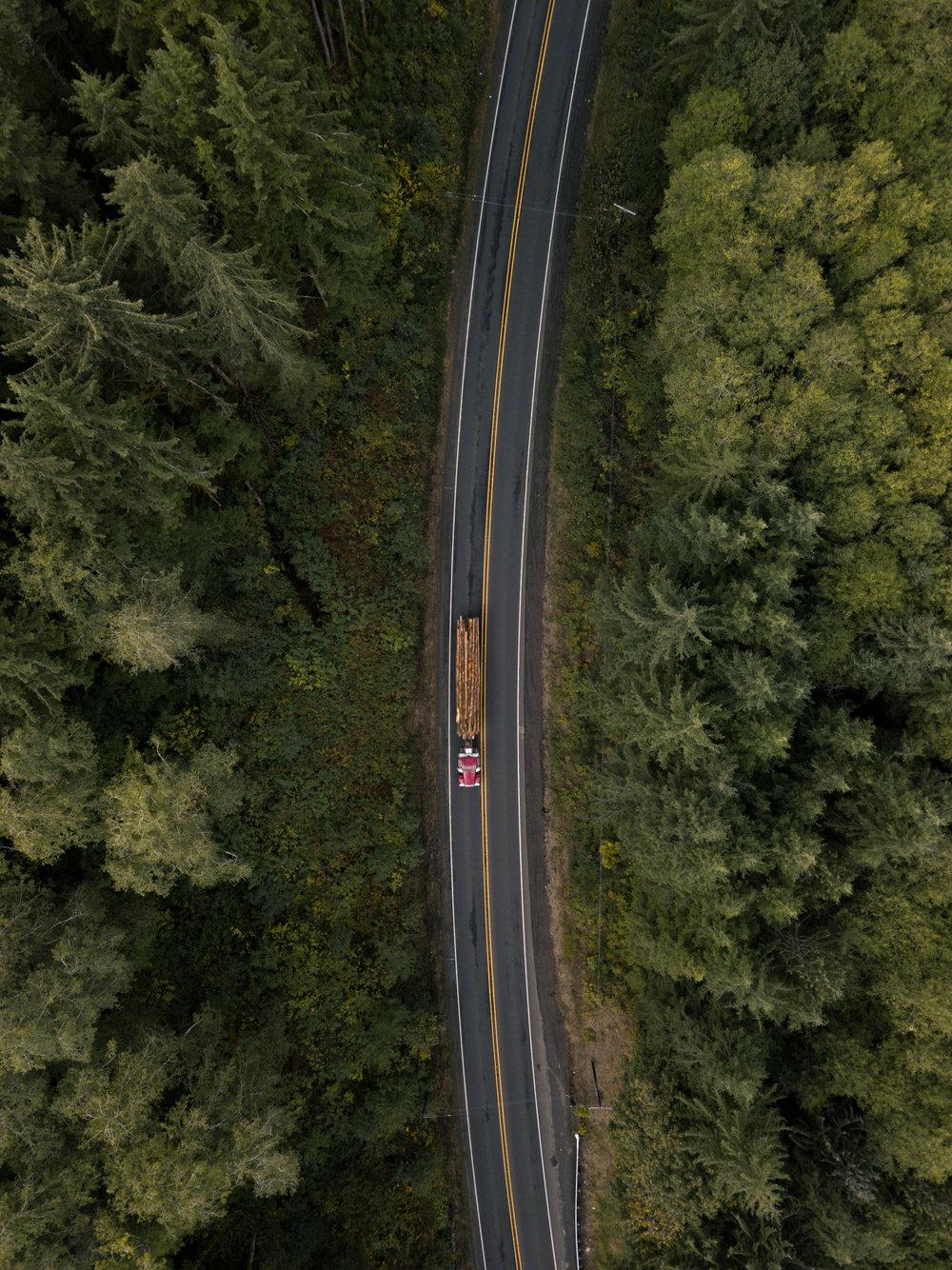 Woodtruck_typoland_aerial.jpg