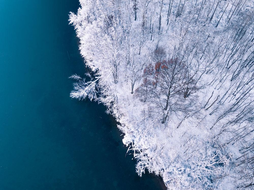 orangetree_typoland_aerial.jpg