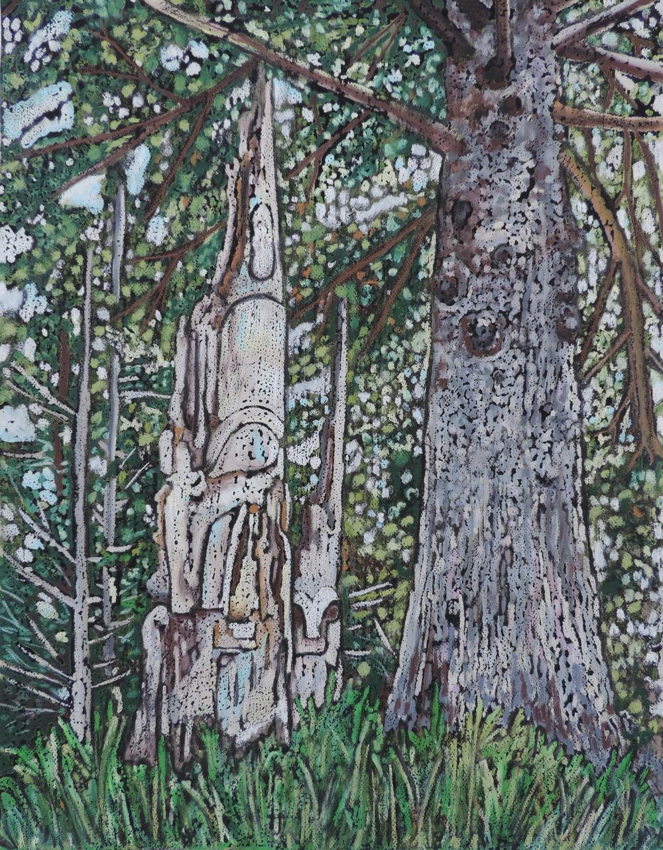 Under the Haida Tree