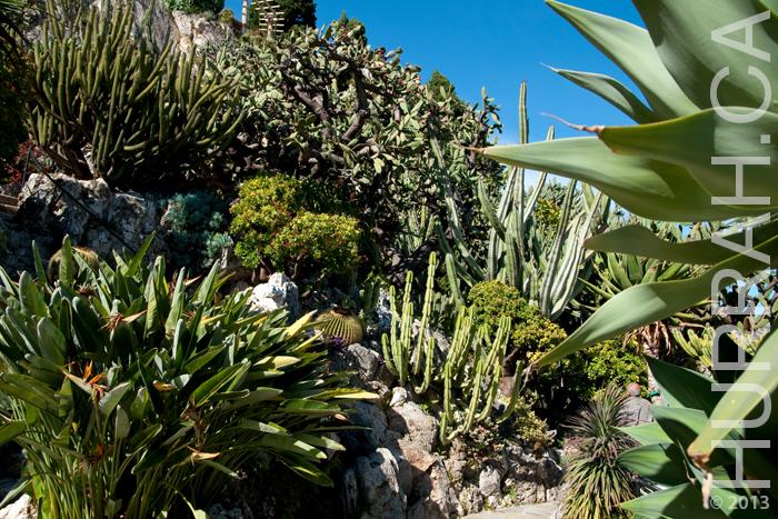 monaco_gardens.jpg
