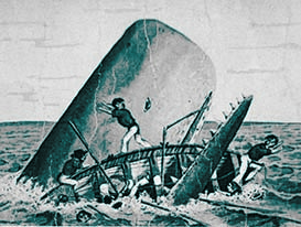 0811 upset whaleboat CROPPED copy copy.jpg