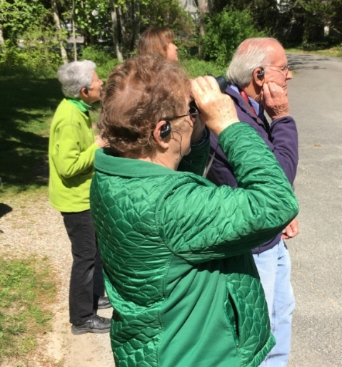 THERE IT IS! —More than two dozen hikers and birders joined Gretchen Moran Towers as she led our 2017 Spring Trail Walk pointing out and identifying various species in perfect May weather.