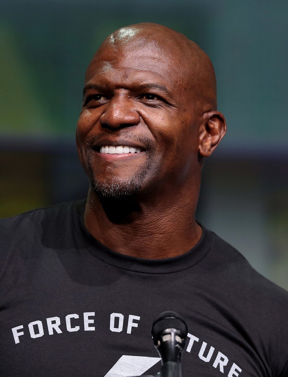 Actor and football player Terry Crews spoke out about being sexually assaulted by a Hollywood executive named Adam Venit. Crews also signed the letter. Image Source:  Gage Skidmore