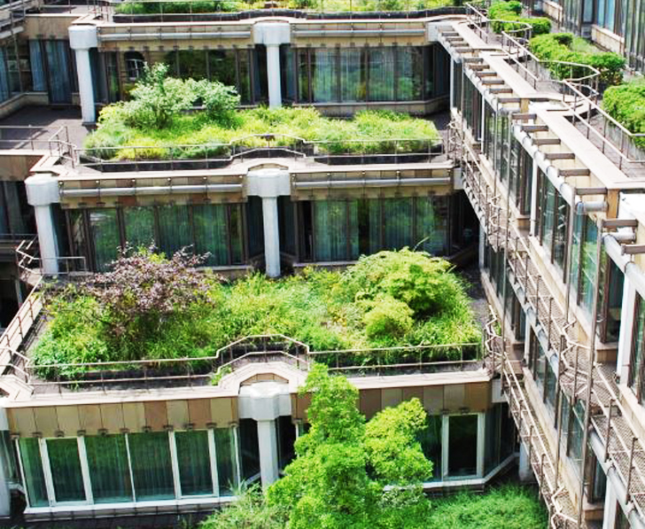 This green roof in Germany is a perfect example of how more buildings are becoming sustainable.