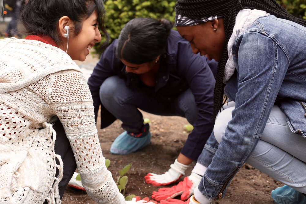 Work Based Learning & Internships - UAGC students cultivate our community garden on Amsterdam Avenue using principles of permaculture & build a carbon-neutral tiny house in their Building Science classroom.44 students were involved in a work-based learning experiences/ internships during the Summer 201836 students were involved in work-based learning experiences/ internships during the School Year 2018 - 2019