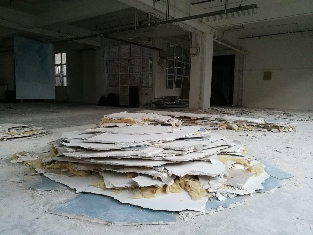 Luis Carrera-Maul (Installation)