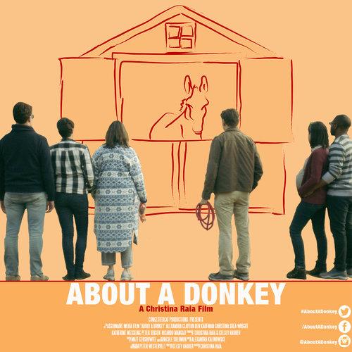 About a Donkey -