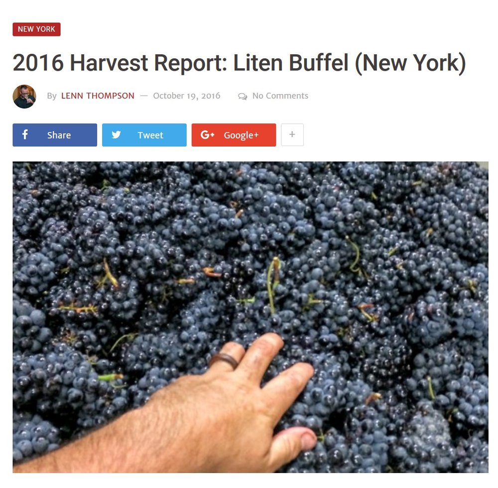NYCR - 2016 Harvest Report.jpg