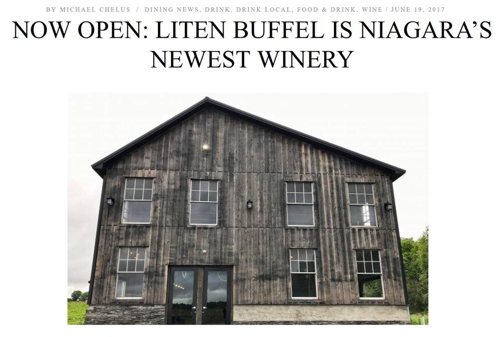 Step Out Buffalo - Liten Buffel.jpg
