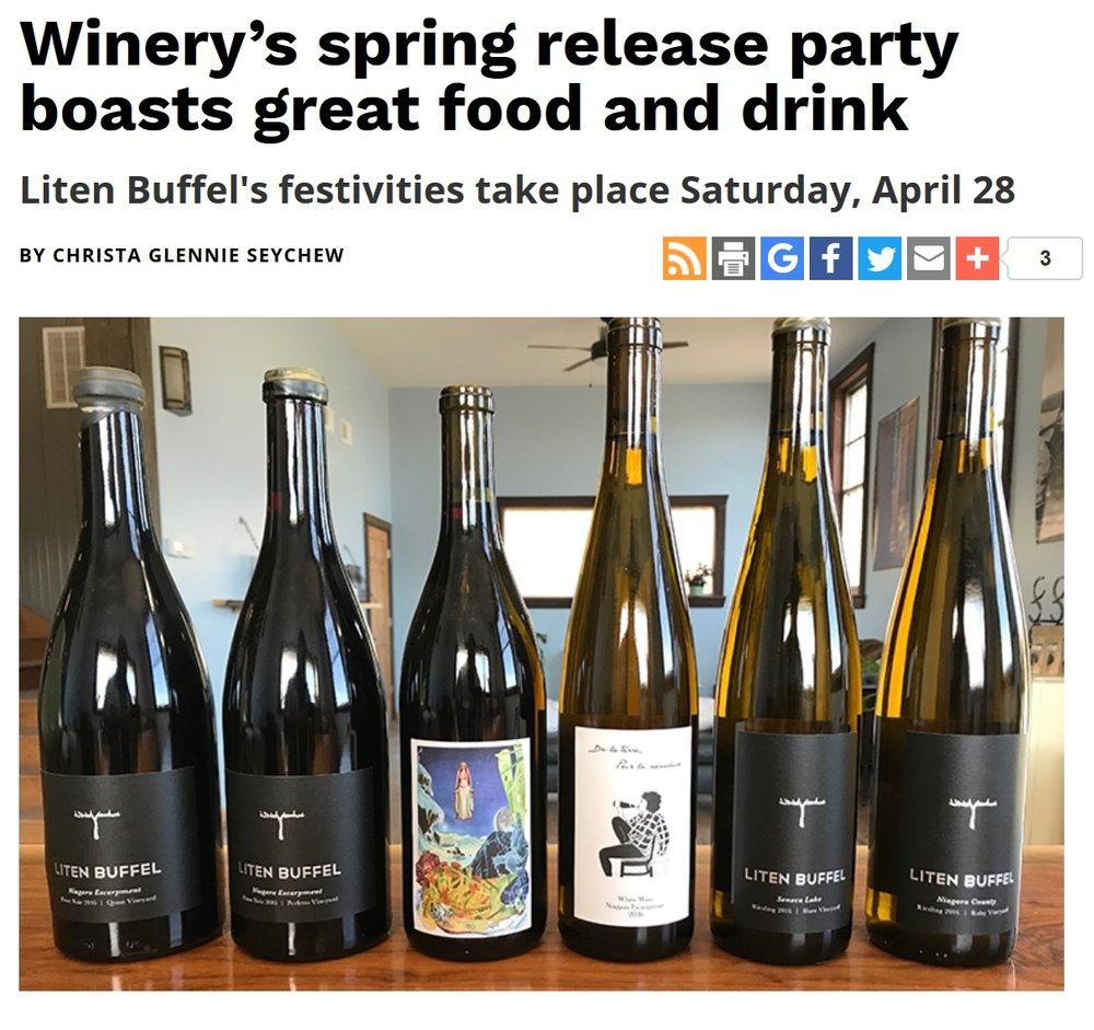 Buffalo Spree Release Party.jpg
