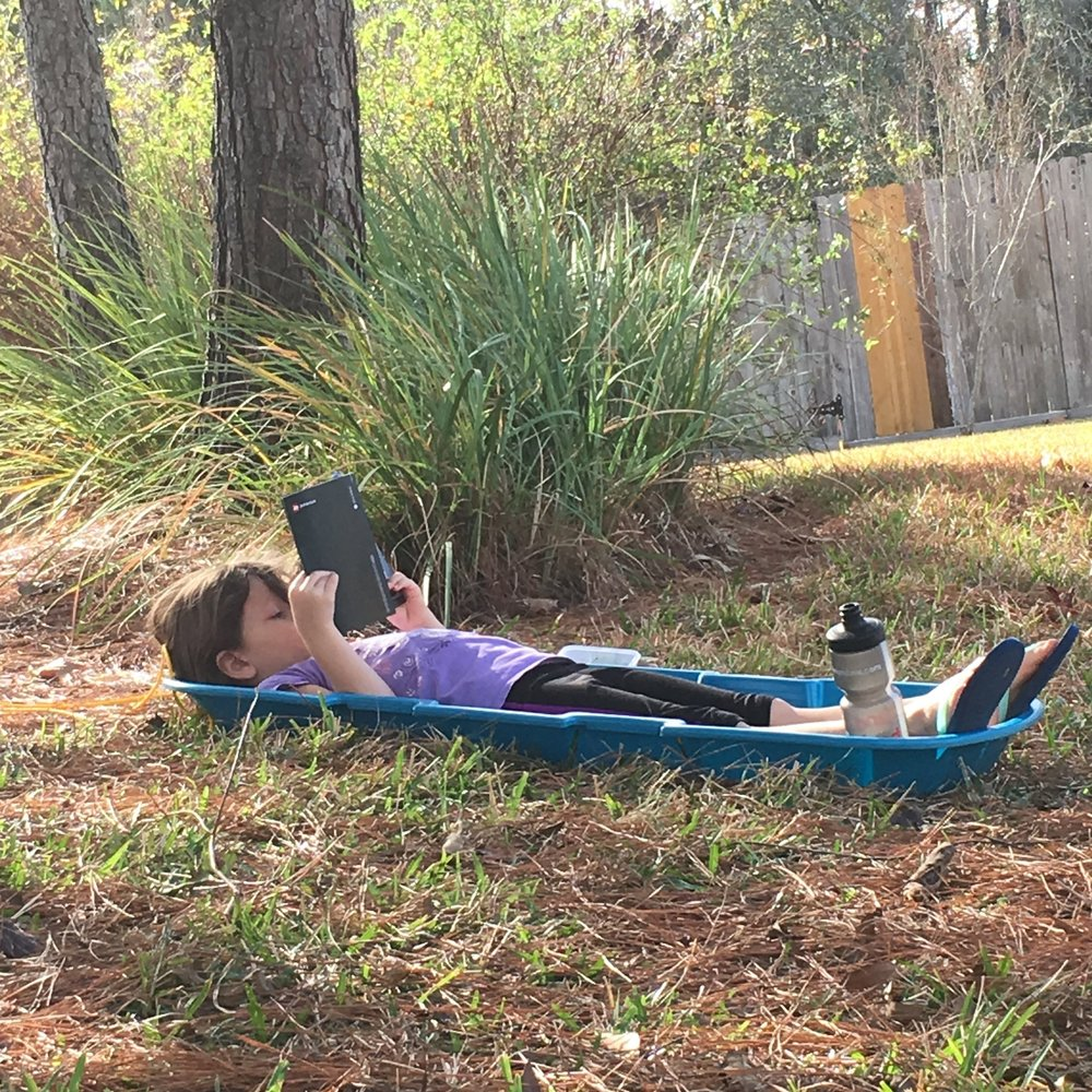 This one is not deterred by Texas' lack of snow. She created her own reading space with our seldom used sled.