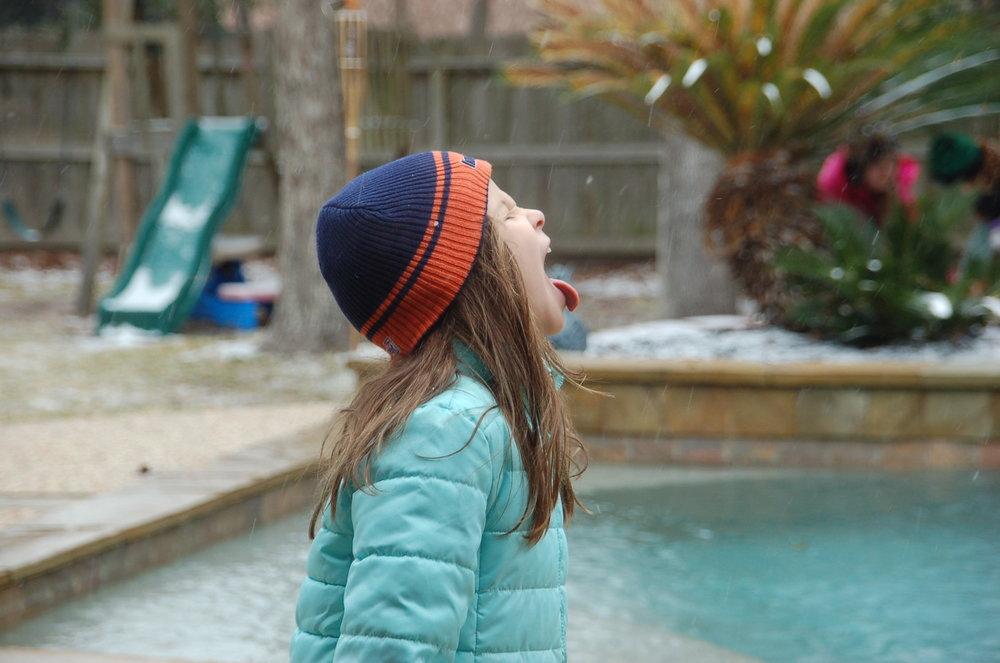 Maddie eating snow.JPG