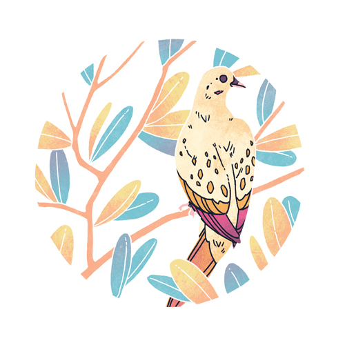 Mourning Dove  digital, 2015