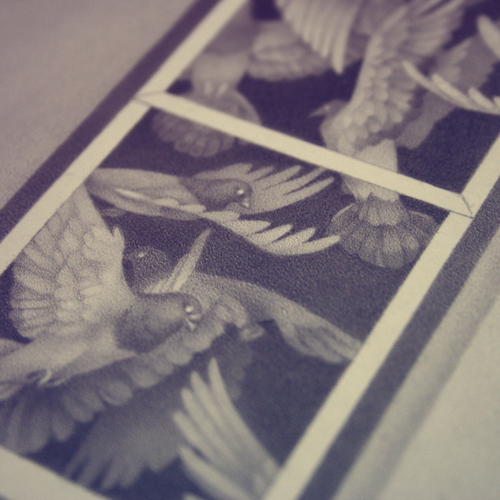 Another detail of the pencil drawing.