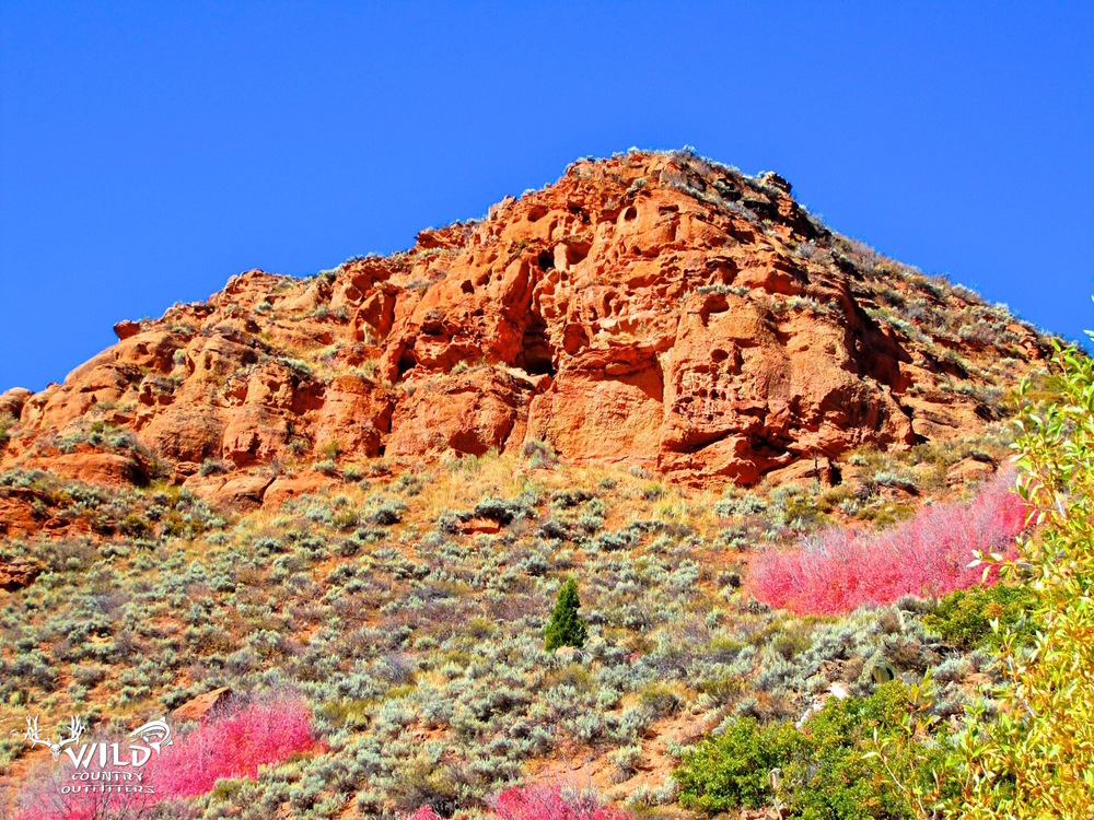 deseret ranch red maples red cliffs utah.jpg