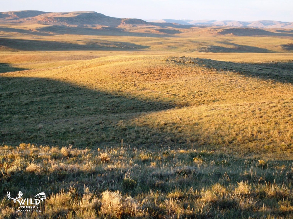 deseret ranch utah open spaces.jpg