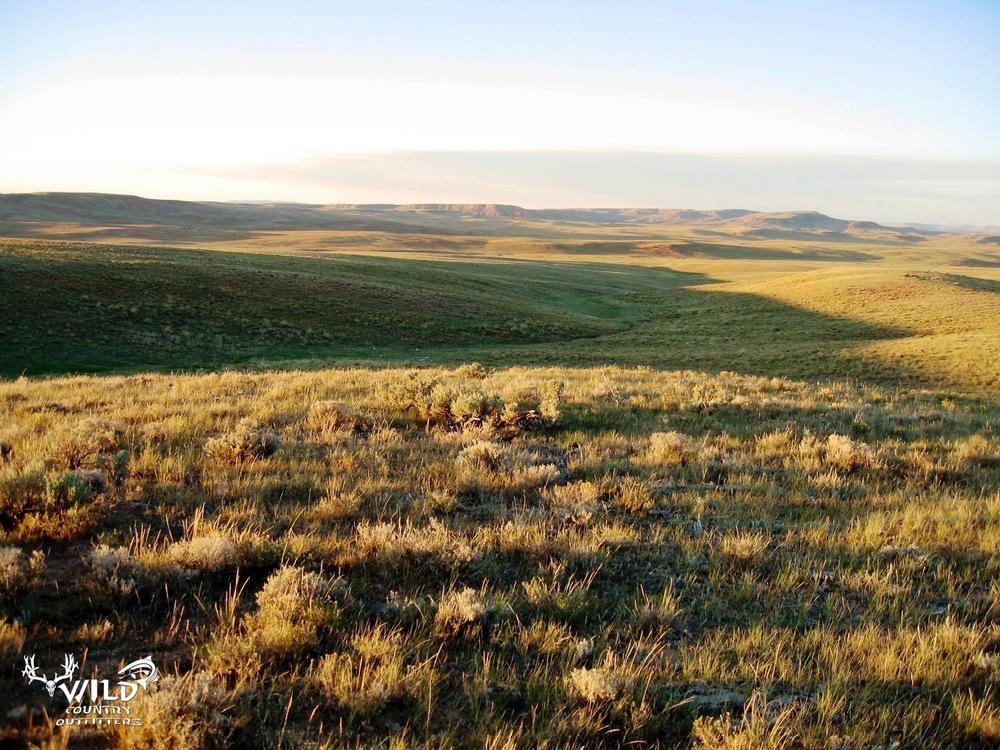 deseret ranch utah prairie.jpg