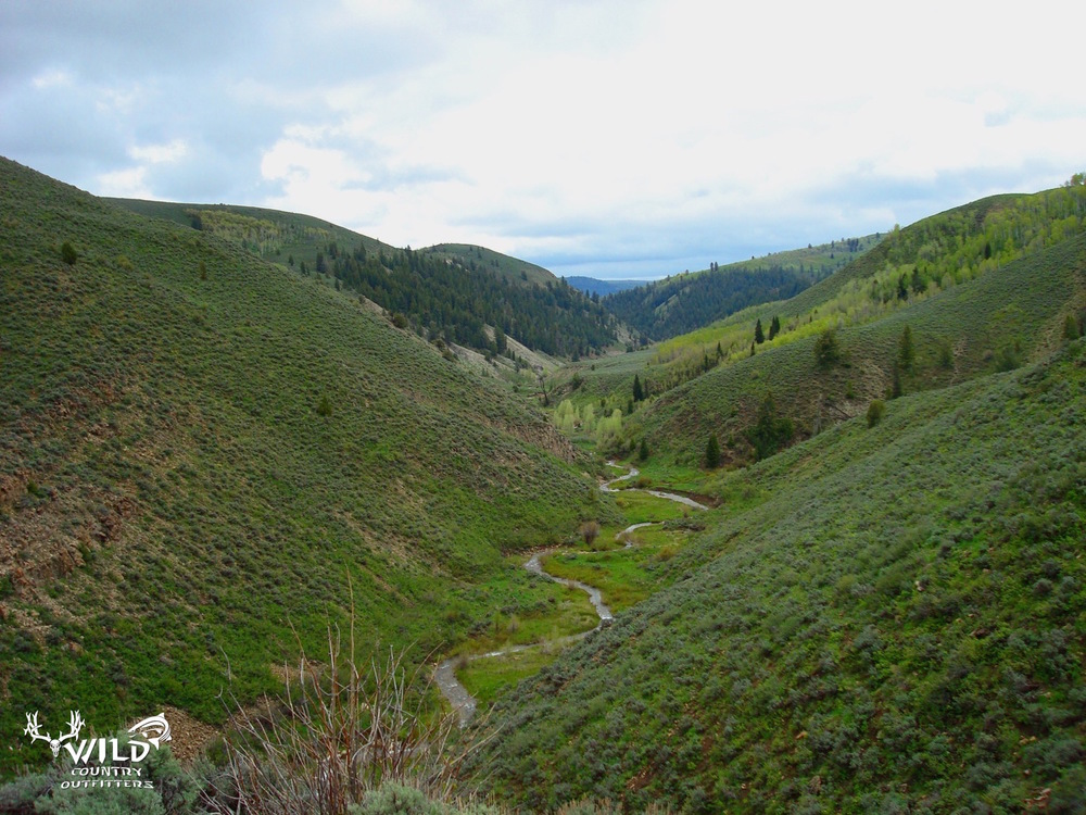 Utah lost creek wilderness rocky mountains.jpg